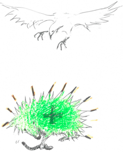 igelgrün